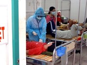 Vietnam sees 9,260 A/H1N1 flu cases so far