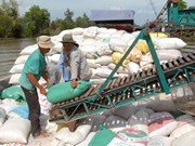 State Bank steps in on rice buy-up