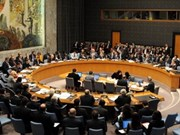 Vietnam supports UNSC membership restructure