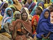 Vietnam hails UN efforts in civilian protection in Darfur