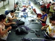 Anti-dumping decision not in line with Vietnam-EU ties