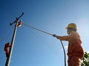 EVN to invest more in power projects