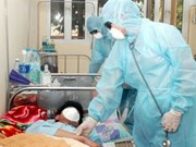 Vietnam confirms one more death from A/H1N1 flu