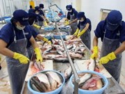 Vietnam's tuna exports to US on the rise