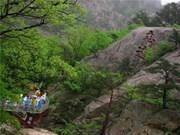 DPRK, RoK set date for travel resumption negotiations