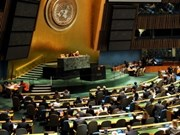 Vietnam joints 13th session of Human Rights Council
