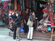 Hanoi introduces five tours to craft villages
