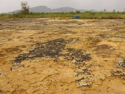 5M USD for dioxin cleanup