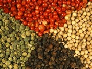 India seeks steady supply of pepper in Vietnam