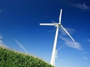 ASEAN needs to develop green energy strategy