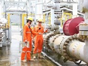 Indian firm interested in BP's Vietnamese asset sales