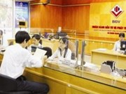 Vietnamese firms focus more on Cambodia