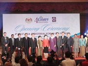 Vietnam attends East Asia forum on families