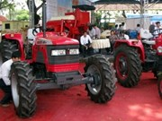 Can Tho to host Vietnam's agricultural show