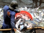 Protest to WWF over tra-fish