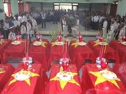 Nghe An holds memorial service for martyrs' remains