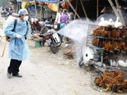 Bird flu control programme to cost 25 mln USD