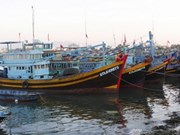 VN works with Philippines on arrested fishermen