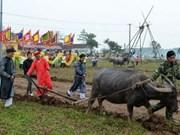 President joins ploughing festival in Ha Nam