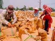 UN regional food conference opens
