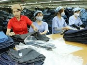 Garment and textile exports to EU plunge