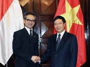 Vietnam-Indonesia committee meets on bilateral ties