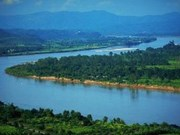 VN works on Mekong river basin strategy action plan