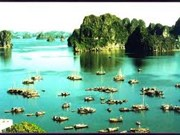 Ha Long Bay promoted to high-end market