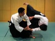 Martial art festival strengthens VN-Japan friendship