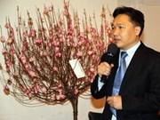 Vietnamese people welcome Tet in Germany
