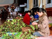 Bao Dap silk flower-making village flourishes