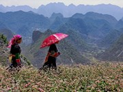 Stone plateau to become national tourism complex