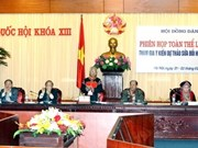 Ethnic affairs council discusses revised Constitution