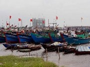 Mekong Delta fisheries centre to be built