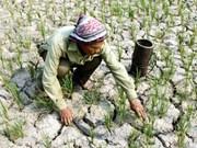 Dam bosses keep eye on drought