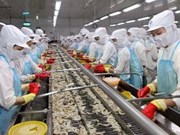 US imposes anti-subsidy duties on Vietnamese shrimp