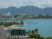 One million trees to be planted on islands in Nha Trang Bay