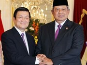 Vietnam-Indonesia ties lifted to strategic partnership
