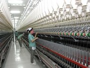 Quang Ninh's largest fibre project starts second phase