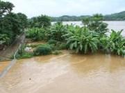 Heavy rains, floods cause great damage