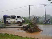 Tropical depression grows into storm in East Sea