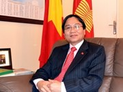 Ambassador: Strong ASEAN essential for regional security, development