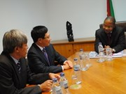 Vietnam, Mozambique focus on economic ties