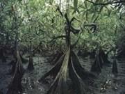 Vietnam hosts meeting on preserving coastal ecosystems