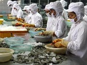 US drops anti-subsidy tax on Vietnamese shrimp