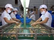 Vietnamese, Algerian businesses seek to boost partnership