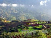 Two landscapes in Sa Pa recognised as Vietnam records