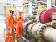Nam Con Son pipeline brings 50 billion cu.m of gas ashore