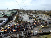 No Vietnamese deaths in Philippines after typhoon Haiyan