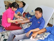 Over 500 Dak Lak volunteers join blood donation festival